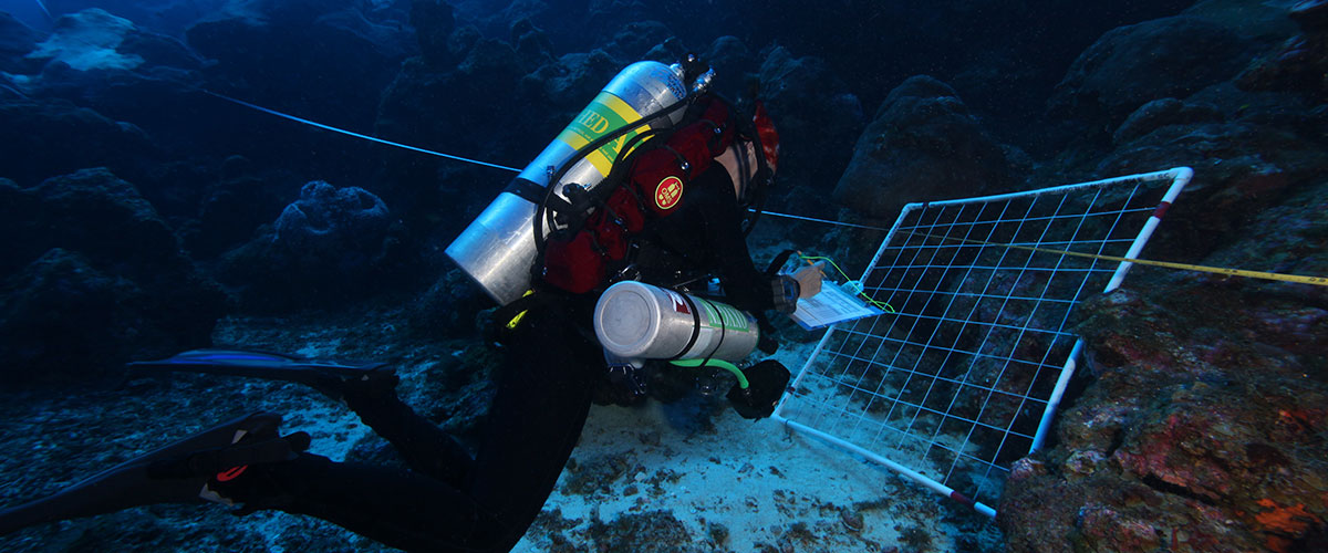 Monitoring programs at National Marine Sanctuaries (NOAA)